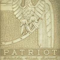 The 1941 Patriot