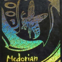 2001 Medorian...2001 Survivors