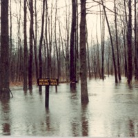 Flooded trails at Starve Hollow, Jan. 1982. - from Starve Hollow SRA,  color 5.14x3.48