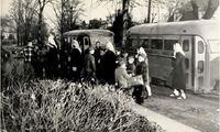 Student buses 1950.jpg